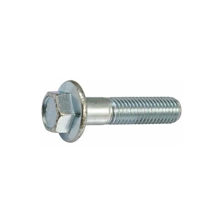 Flange Bolt_D1006951_main