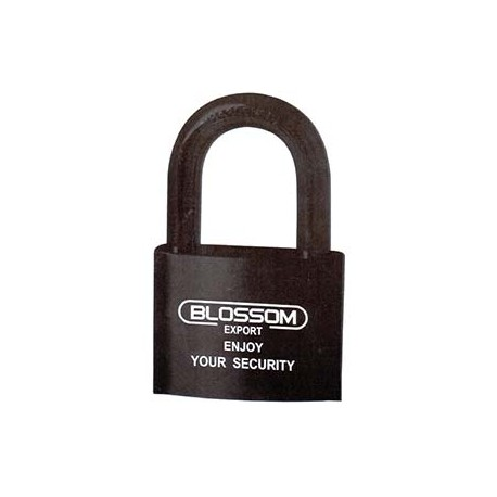 Lock - Hardened Steel - 7 Brass Leaves - 40 x 33mm_D1140867_main