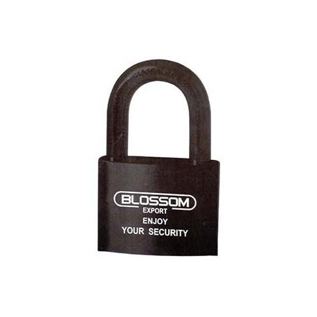 Lock - Hardened Steel - 8 Brass Leaves - 60 x 45mm_D1140869_main