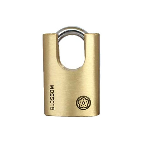 Unique Shape Shackle Half Protected Brass Padlock--BC96-60_D1140851_main