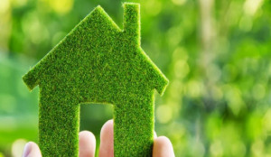 Tips for Making Your Home or Business More Environmentally Friendly