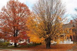 Tips to Prepare your Home for Fall Weather